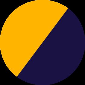 Navy/Gold